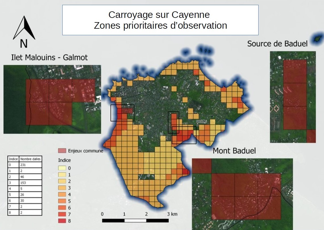 Carroyage sur Cayenne - Zones prioritaires d'observation